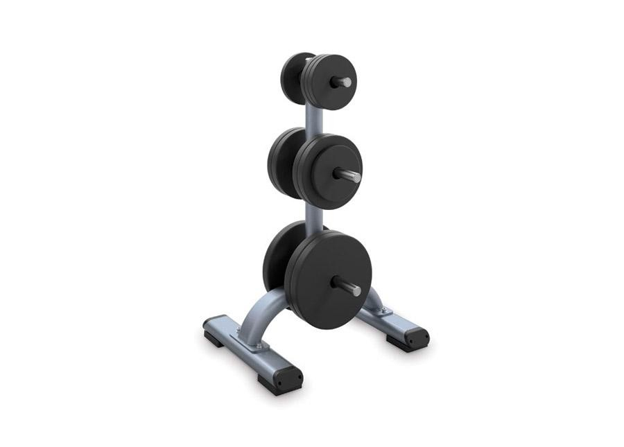 Precor Discovery Series Weight Plate Tree